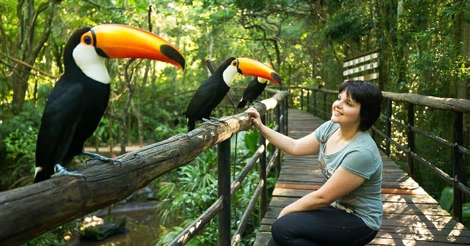 Quais são os 4 passeios em Foz do Iguaçu que você não pode deixar de fazer aves