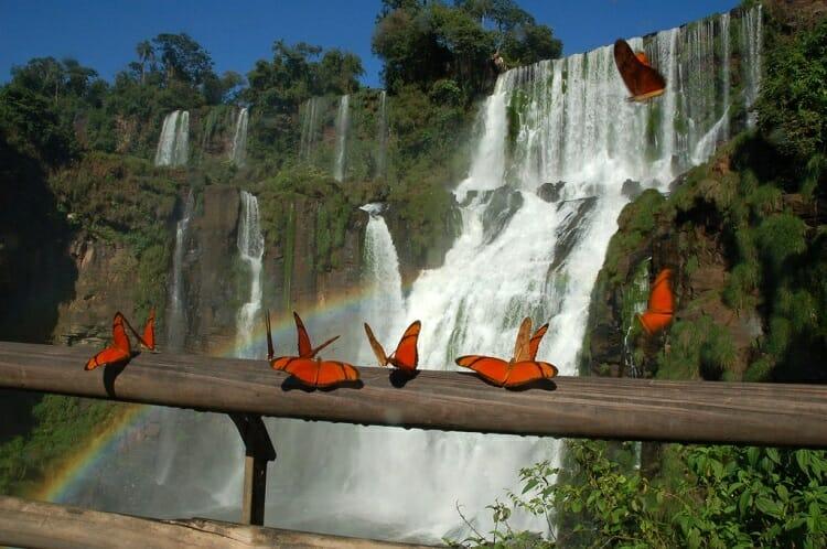 viagem a Foz do Iguaçu, 8 dicas especiais para sua viagem a Foz do Iguaçu., Passeios em Foz do Iguaçu | Combos em Foz com desconto