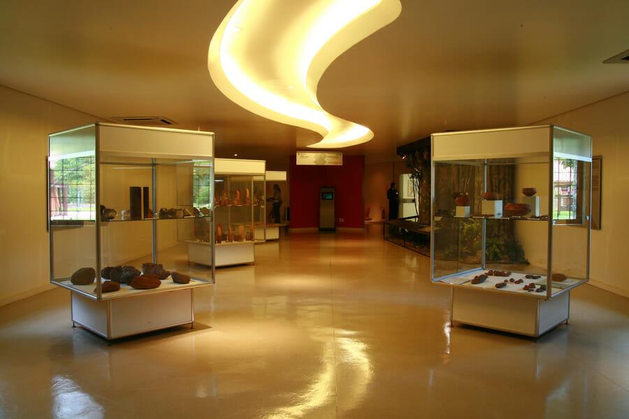 Conheça mais sobre o passei no Ecomuseu da Itaipu. pré-história ecomuseu