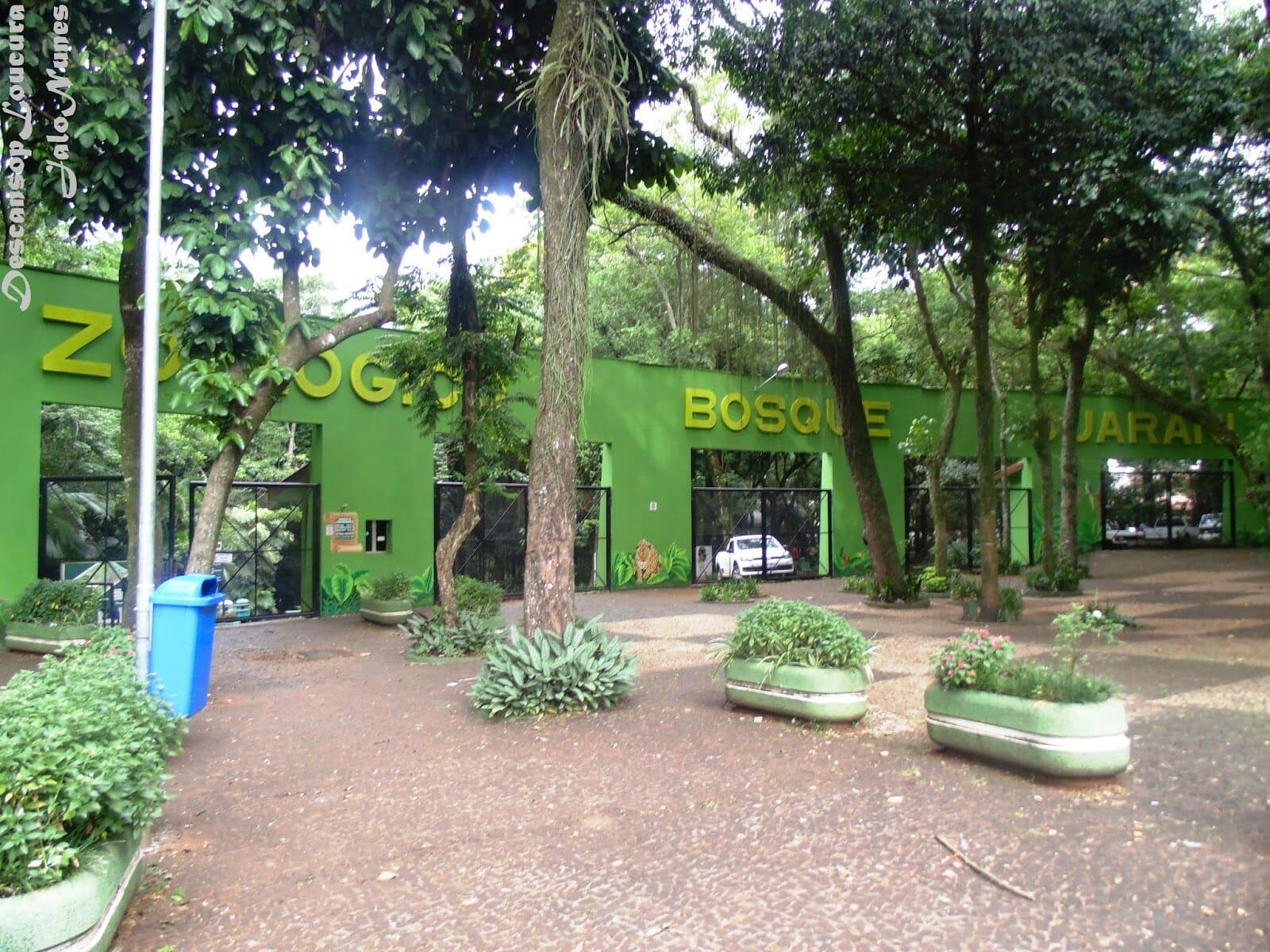 Saiba o que fazer no centro de Foz do Iguaçu com essas dicas bosque guarani
