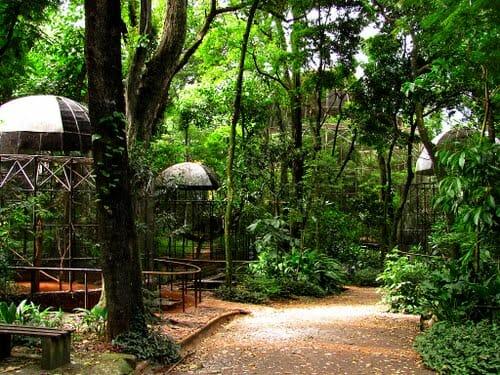 ROTEIRO! Conheça os 7 atrativos totalmente gratuitos em Foz do Iguaçu!