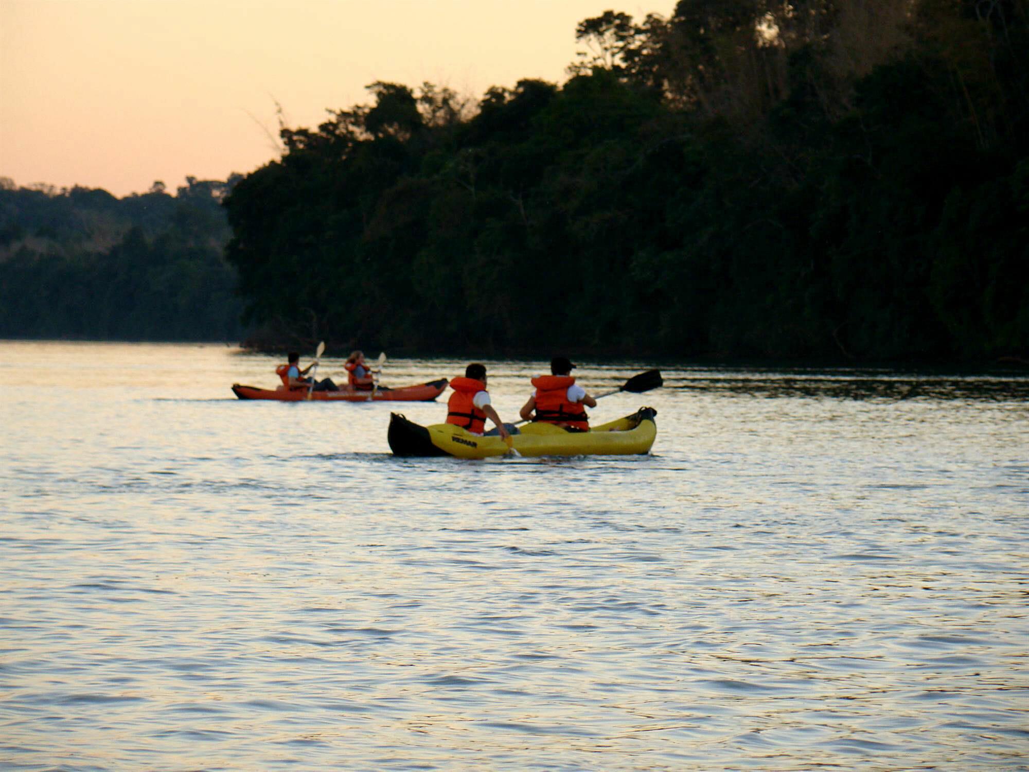, Trilha do Poço Preto, um passeio pelo coração do Parque Nacional do Iguaçu, Passeios em Foz do Iguaçu | Combos em Foz com desconto