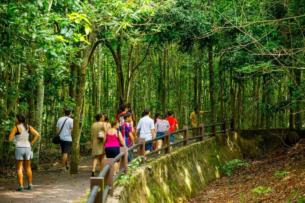 Saiba quais são todos os passeios dentro da Complexo Turístico da Itaipu! refugio