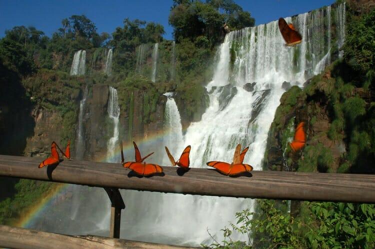 dia das mães em Foz do Iguaçu, Dicas: Como aproveitar o dia das mães em Foz do Iguaçu, Passeios em Foz do Iguaçu | Combos em Foz com desconto