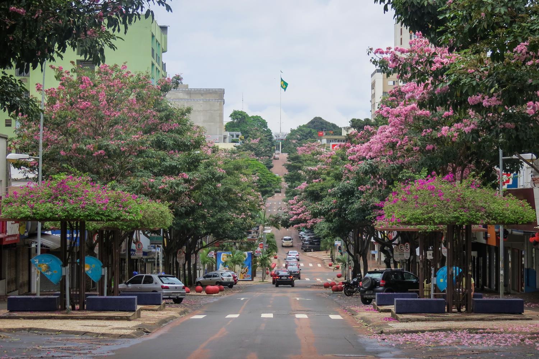 , Conheça muitos passeios de Foz do Iguaçu com o incrível roteiro do City Tour!, Passeios em Foz do Iguaçu | Combos em Foz com desconto