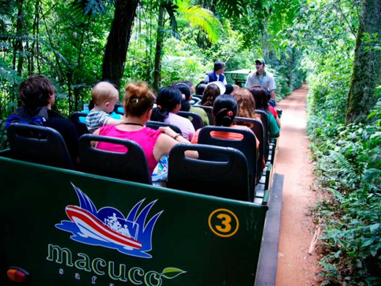 Venha conhecer o Macuco Safári, dentro do Parque Nacional do Iguaçu!! macuco carro