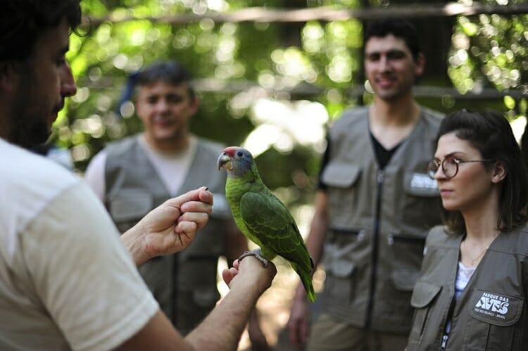 Parque das Aves - BackStage - passeios em Foz do Iguaçu