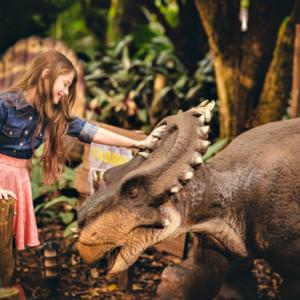 Vale dos Dinossauros (6)