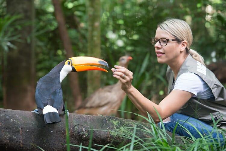 Parque das Aves - Visitante alimentando tucano - Onde se hospedar em Foz do Iguaçu?