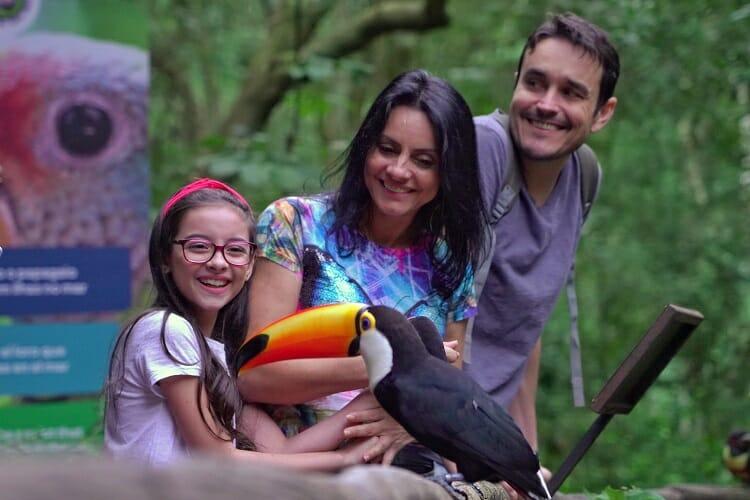 Parque das Aves - (Guia) Melhores Lugares para visitar em Foz do Iguaçu em 2021!