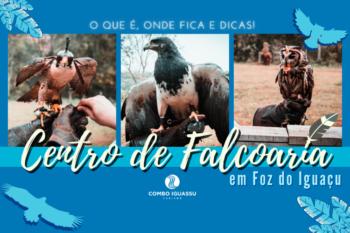 Centro de Falcoaria em Foz do Iguaçu – O que é, onde fica e dicas! (5)
