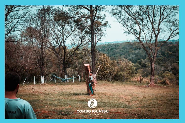 Centro de Falcoaria - Falcoeiros Bruno Nogueira e Leandro Mautone