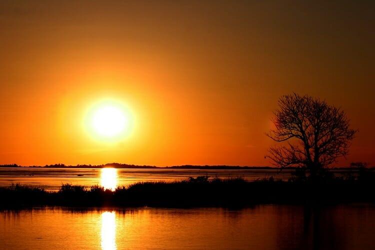 Floresta Amazônica iluminada com o pôr do Sol, uma das Sete Maravilhas da Natureza.