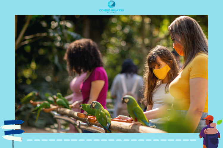 Parque das Aves | Passeios em Foz do Iguaçu | Programação ao ar livre