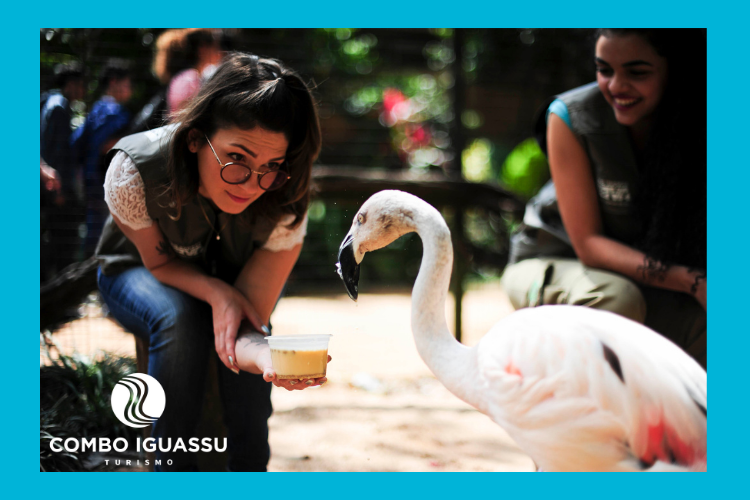 Menina interagindo com flamingo no Parque das Aves.
