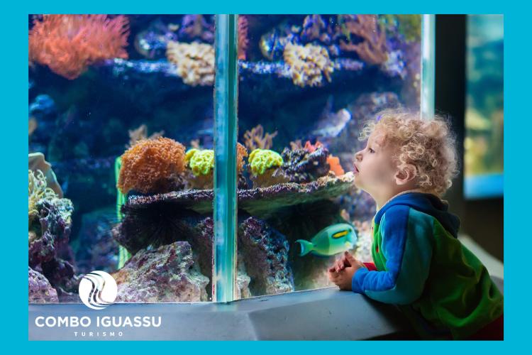Criança observando aquário com peixes, ilustração do Grupo Cataratas AquaFoz