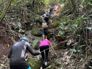 Iguassu Secret Falls: Tour Meio Período