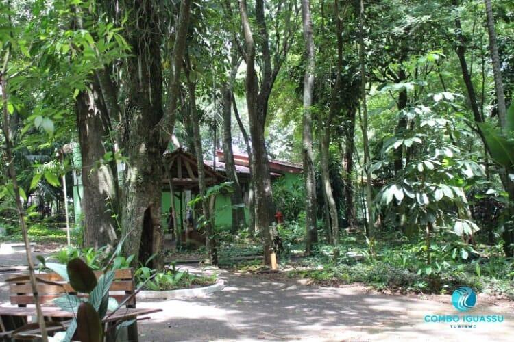 Bosque Guarani e sua mata linda.