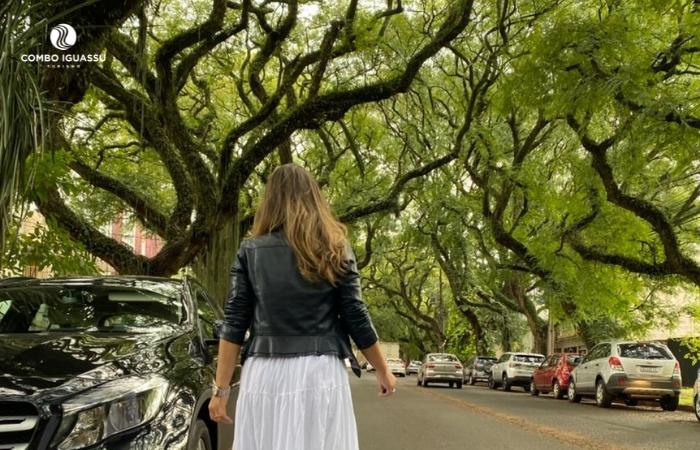 Centro de Foz do Iguaçu rua pedro basso